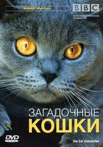 BBC: Мир природы. Кошки  ОНЛАЙН